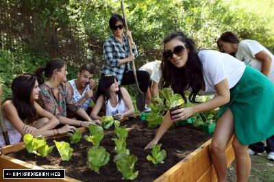 Kardahshian-Jenner garden